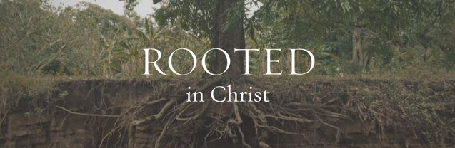 rooted-in-christ